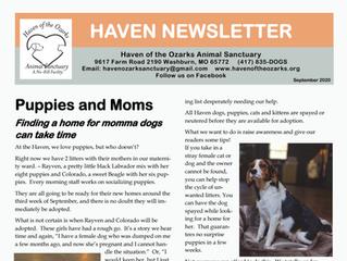 Haven Happenings: September 2020 Newsletter