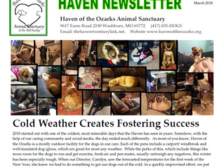 Haven Happenings - March 2018 Newsletter