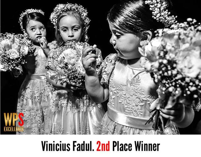 Vinicius Fadul - Fotografo de Casamento Premiado - WPS awards 21.jpg