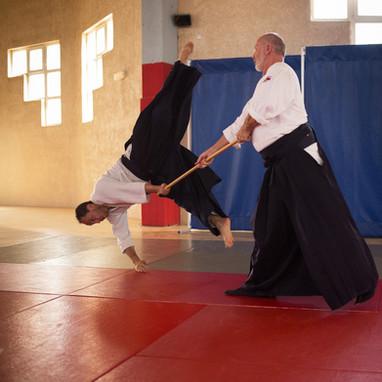 Cours aïkido Institut Français Aïkido