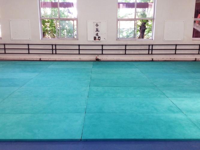Cours d'aïkido club lyon croix-rousse
