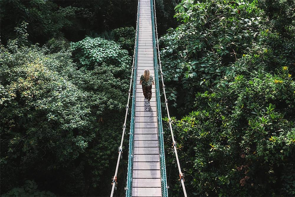 KL Forest Eco Park Rope Bridge