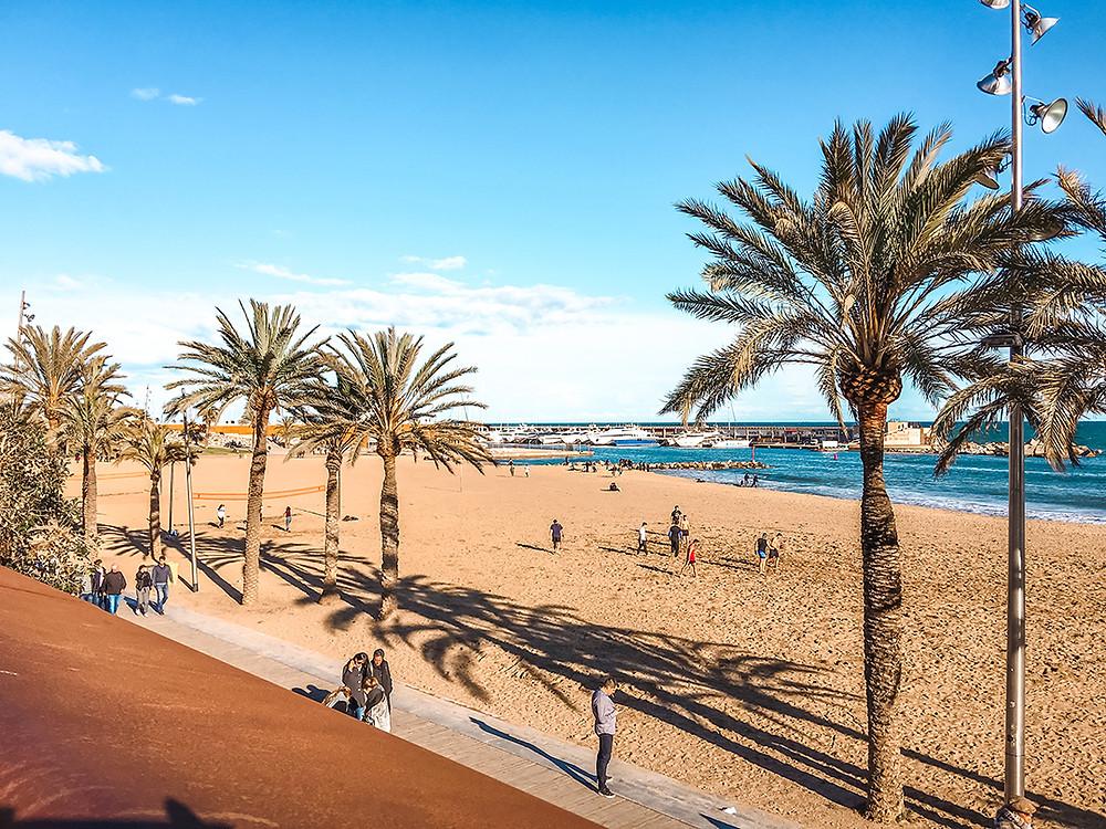 Sunny beach in Barcelona