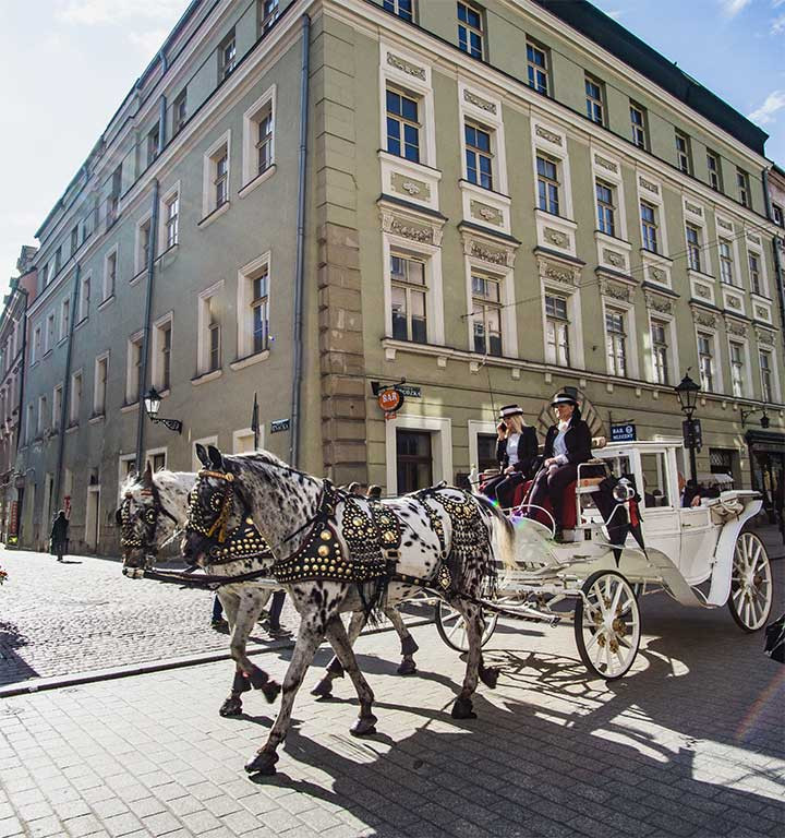 horse and carriage krakow