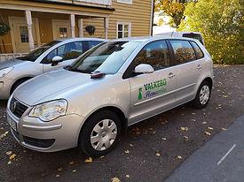 Polo Valkebo.jpg