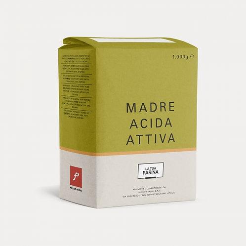 "Madre acida ""Molino Pasini"" - 1 kg."