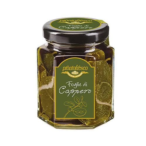 Feuilles de câpres à l'huile d'olive - 220 gr