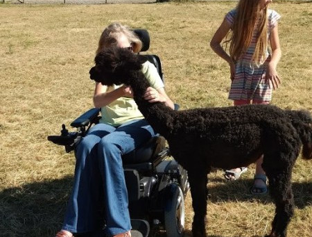 Fun At The Alpaca Ranch