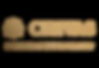 Chivas Masterbrand Logo Lock up_BrushedB