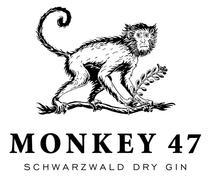 monkey47_logo.jpg