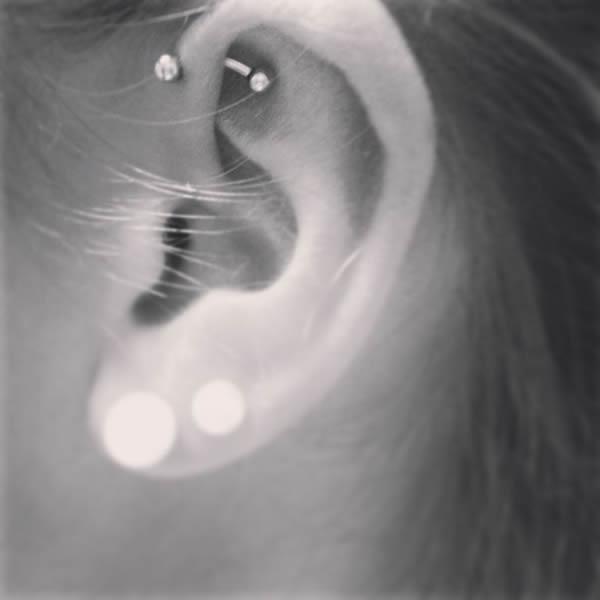 ear2_kara.jpg