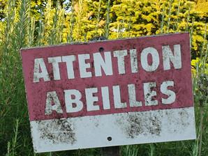 Attention abeilles