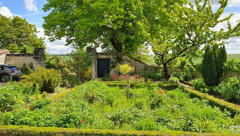 jardin dans la cour