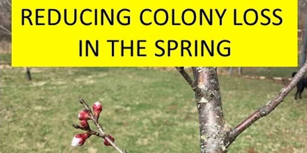 CANCELLED: April Meeting: Reducing colony loss in the spring — an ongoing experiment.