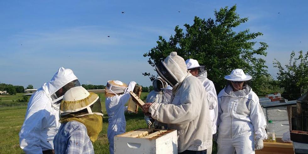 BRBA Annual Beginning Beekeeping Class