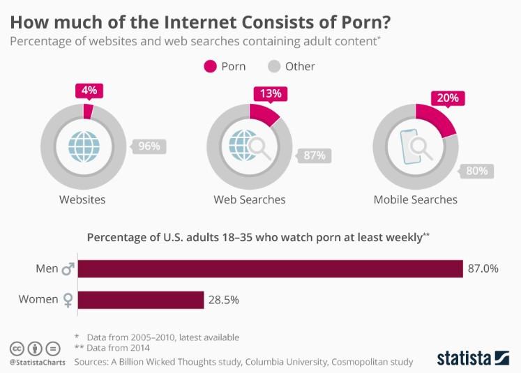 Pie chart showing web data. Private investigator.