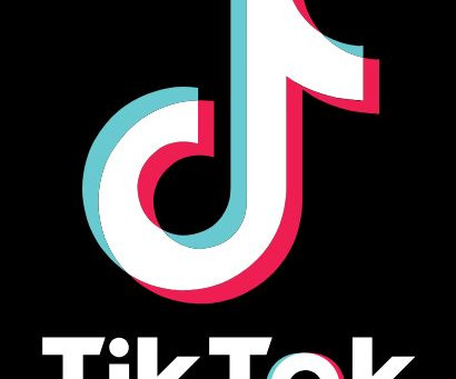 TikTok Craze – NEW to our Internet Profile Reports