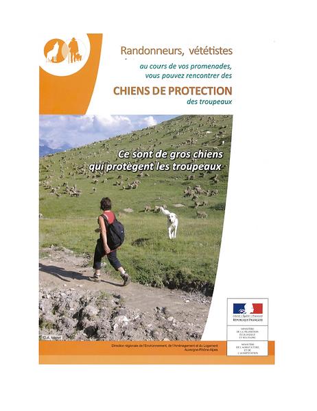 2021_08_10_chens_de_troupeaux_image.PNG