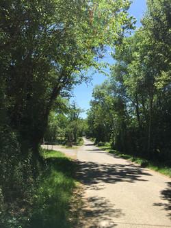 Route d'Esclanèdes.JPG