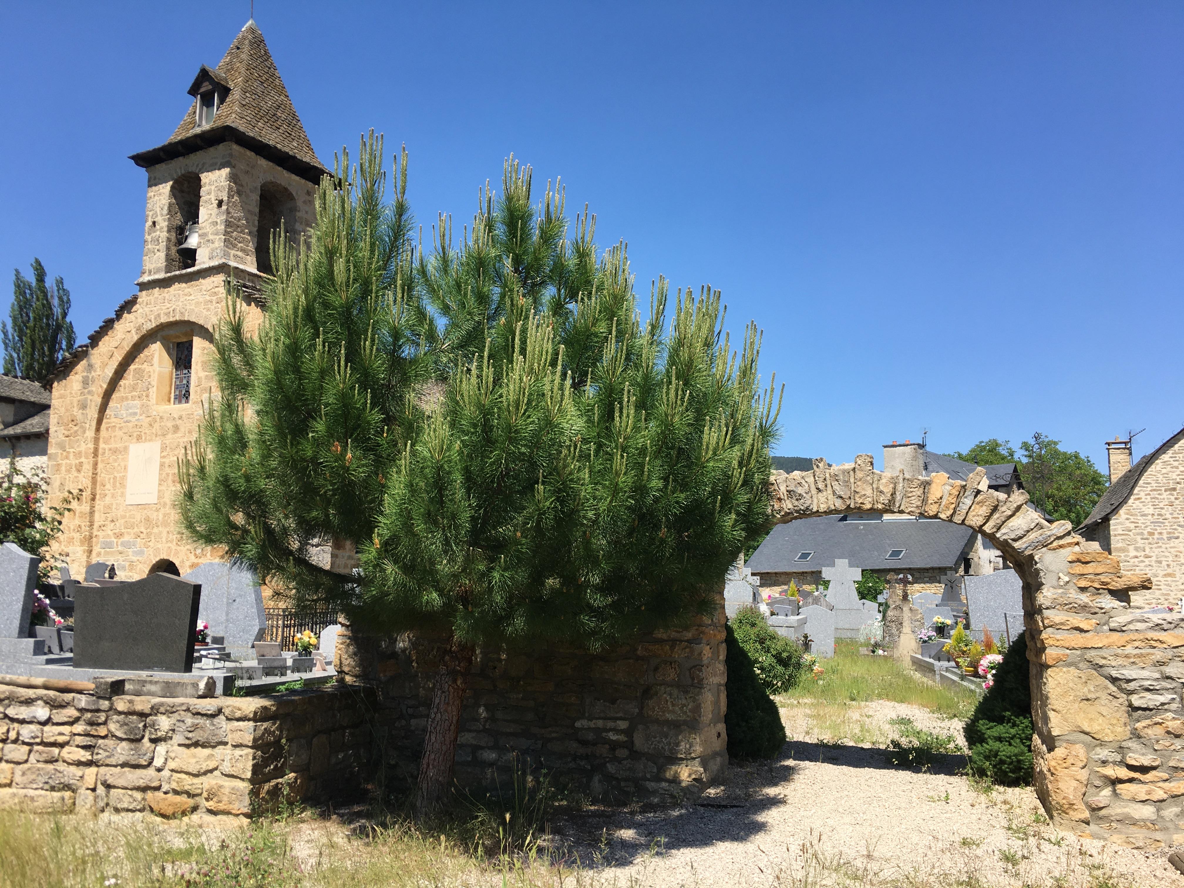 Eglise d'Esclanèdes.JPG