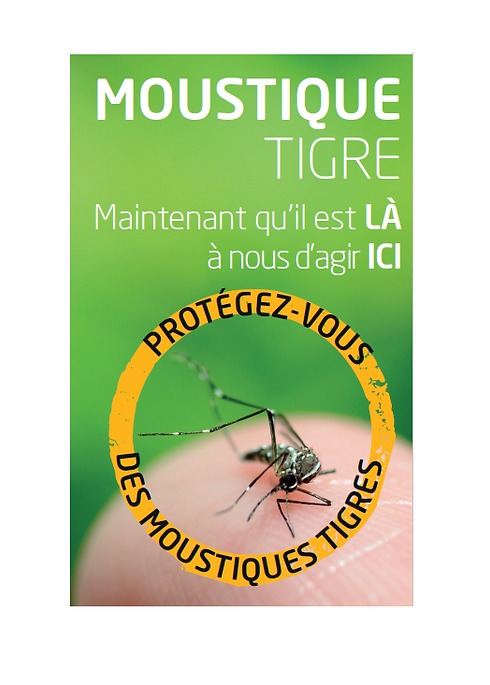 moustique_tigre_image.PNG