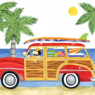 Dog driving Woody in Hawaii