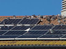 Knights Resources Solar Protection service from timber to metal galvanised structures