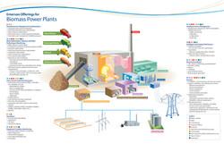 Biomass-center RGB.jpg