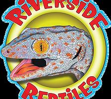 Ancient Reptiles Non-Member
