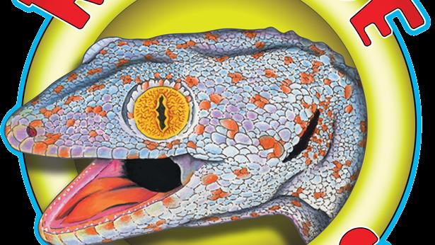 Ancient Reptiles Member