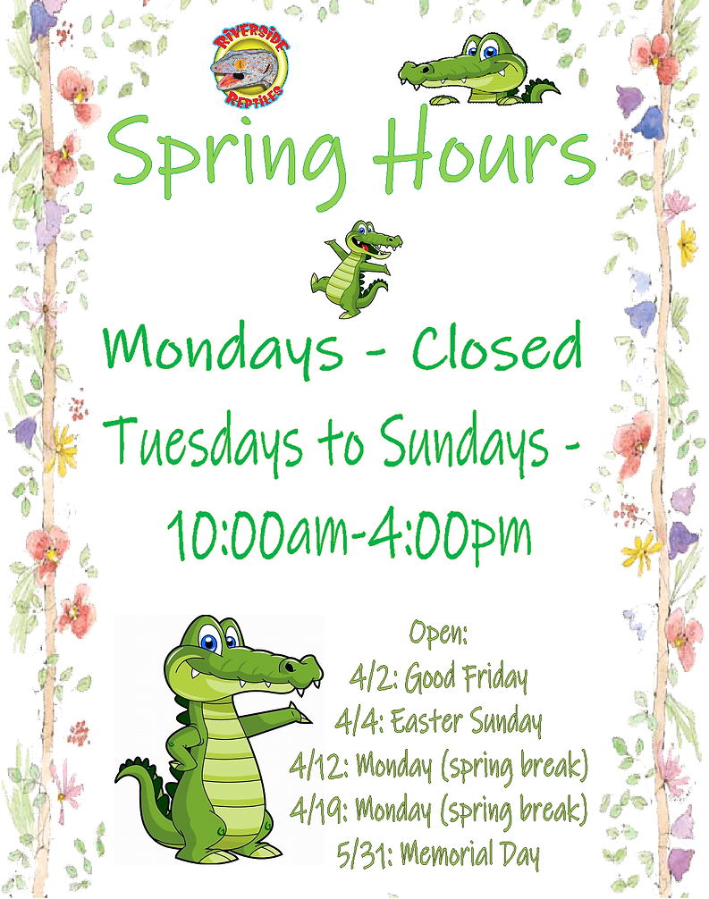 spring hours.png