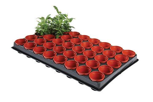 Frø- og stiklingsbrett med potter (40 x 6 cm potter)