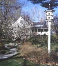 stepping stones birdhouse