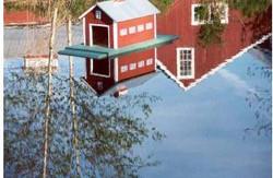 Curtis Farm Koi Pond