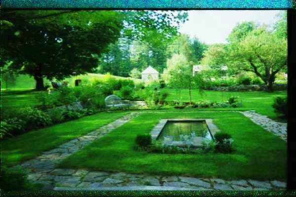 Frongillo's Garden