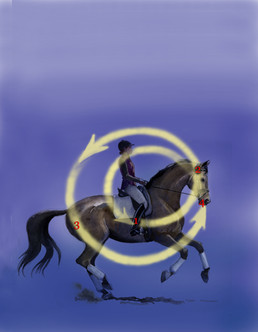 watercolor and digital illustration for Dressage Today