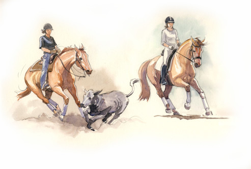 Cutting Dressage Horse and Rider