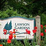 lawson garden.jpg
