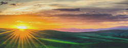 Visit Pullman- Facebook Covers