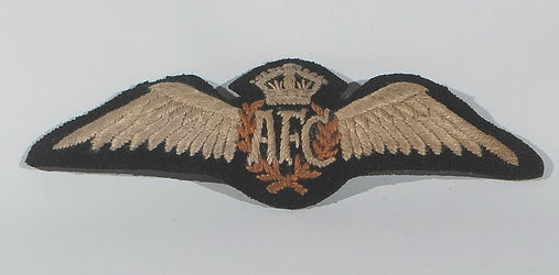 AFC Wing Front.jpg