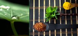 WIX+herbs.jpg
