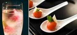 WIX+watermelon+glass.jpg