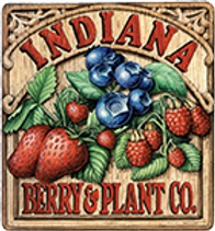 Indiana Berry.png