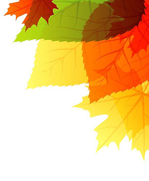 Fall Corner.jpg