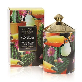 AB738 Toucan Play That Game Wild Things 320gr Candle