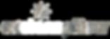 Stone Pillow Logo - White.png