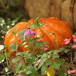 Keramische Garden Pumpkin
