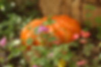 Ceramic Garden Pumpkin