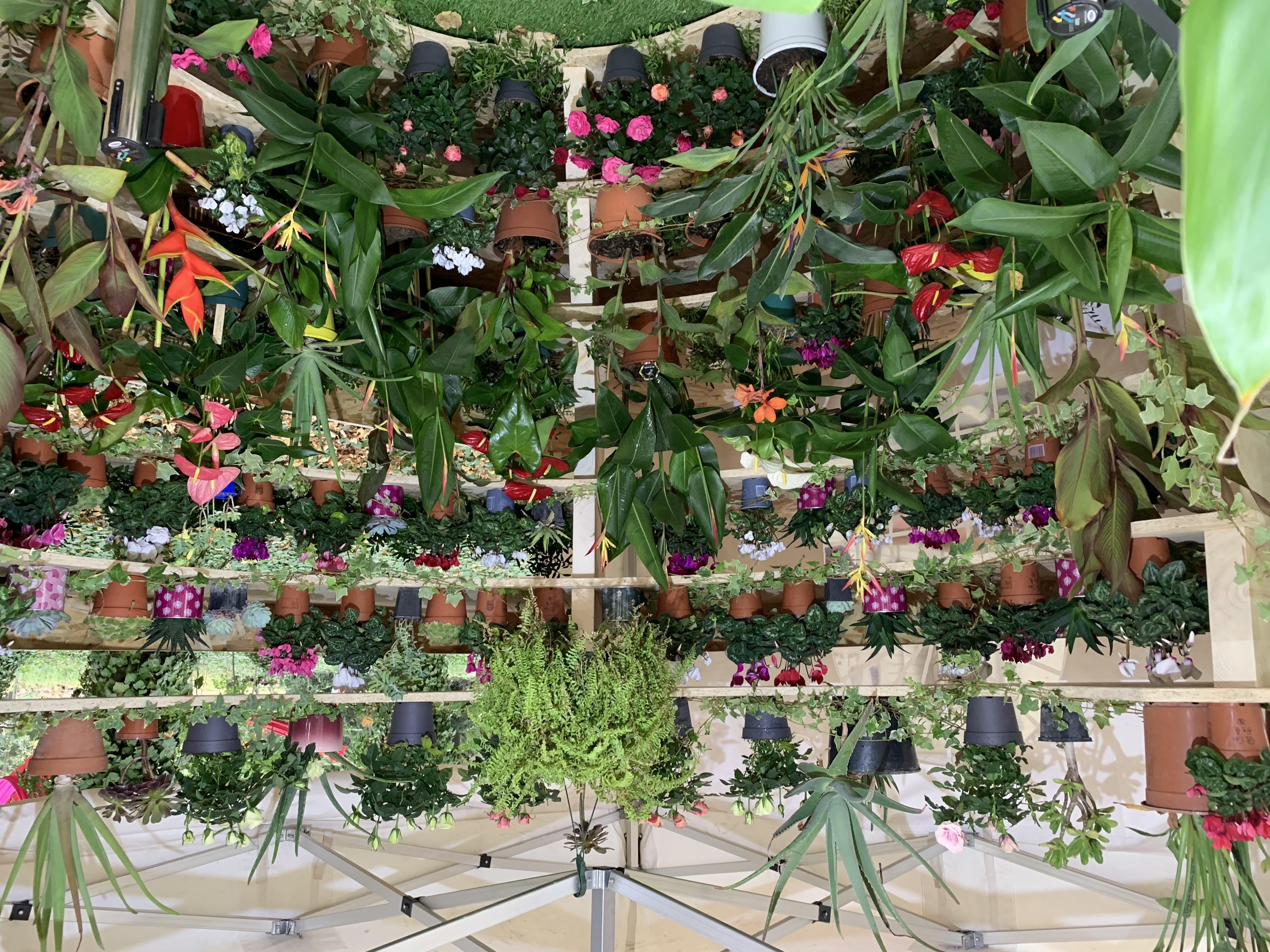 Le jardin vertical des villes jumelées
