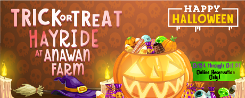 Trick or Treat Banner.png